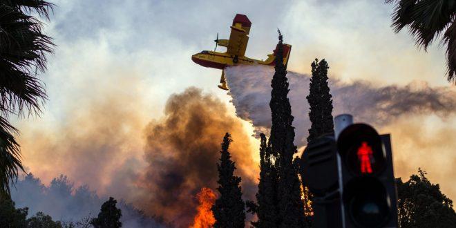 שורת הבטחות לנפגעי השריפות בדיון בכנסת